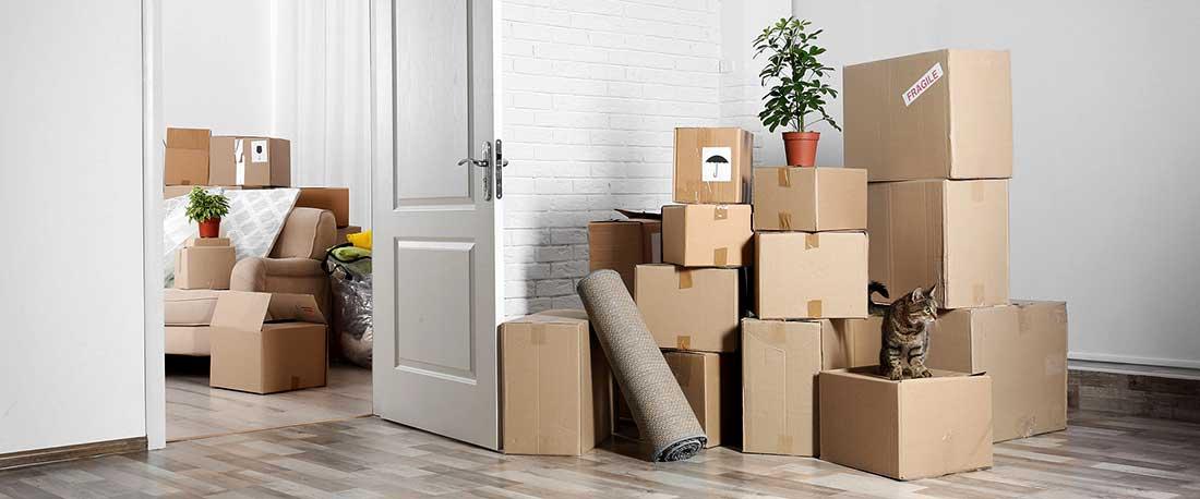 Недорогая перевозка мебели